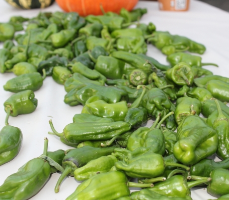 Chiles from Weiser Family Farms