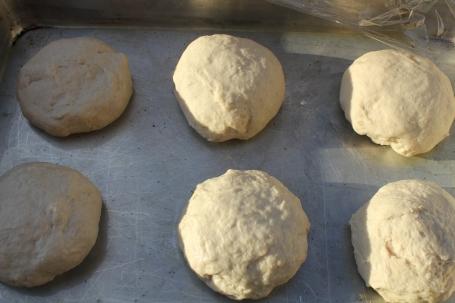 Balls of dough rising under plastic wrap