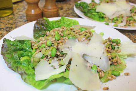 Italian Farro Salad uses fresh Fava or Soy Beans