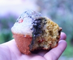Blue & Yellow Muffin in hand 5530 550