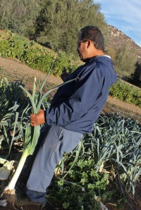 Salvador giving us a tour of The Ranch garden.
