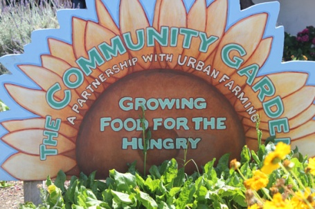 The Holy Nativity Community Garden